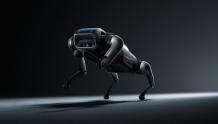 仿生四足机器人!会是下一个风口吗?